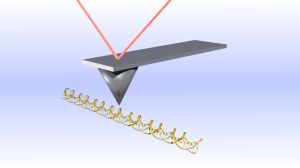 Picture of an AFM cantilever with a laser beam reflecting off of it.